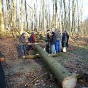 2012 Holz Seminar