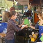 Apfelsaftpresse beim Apfelfreundefest 2014