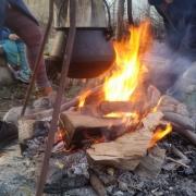 Feuerholz-Aktion 2020