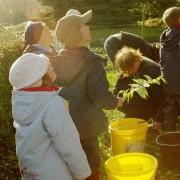 Apfel-Projekttag 2005